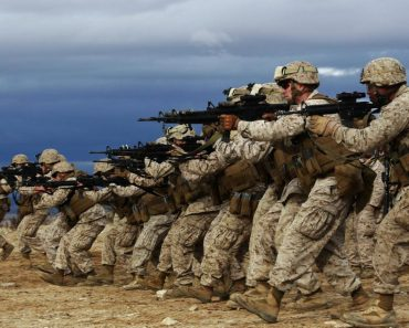 What is the difference between military branches?